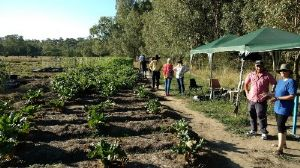Community Farm Open for Visits