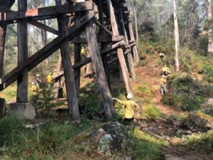 Protection of Heritage Trestle Bridges in the Upper Murray