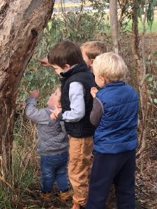 Nestbox experience resonates with young and old