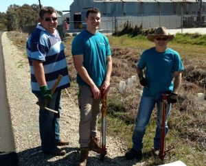Plants in, thanks to Pacific Biologics workplace volunteers