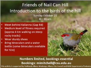Introduction to the birds of Nail Can Hill